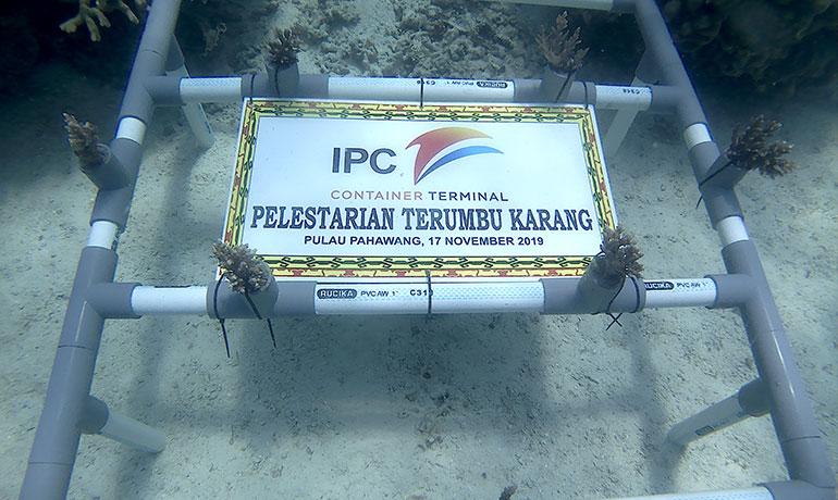 Penanaman-Terumbu-Karang-20-November-2019-2